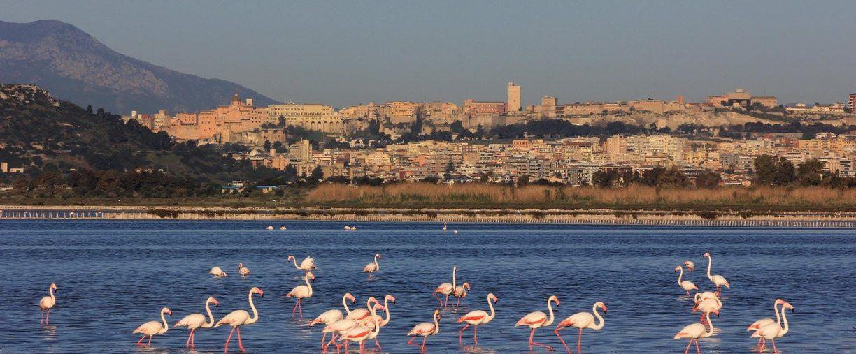 Capo Blu Boutique Hotel Cagliari e i suoi quartieri storici